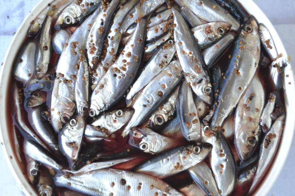 Пряная рыба в домашних условиях