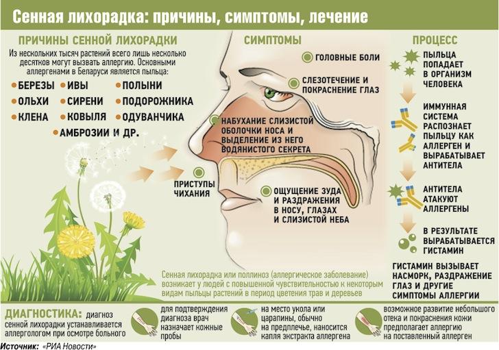 Лечение сезонной аллергии у беременных 581