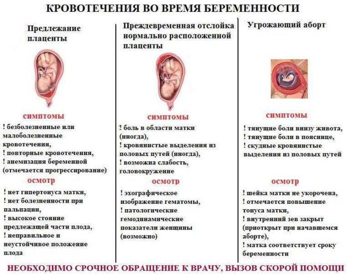 3 недели беременность кровотечение