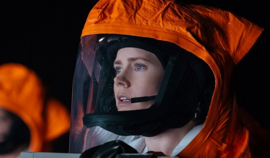 Arrival (2016) – The Film's Secret Meaning Explained