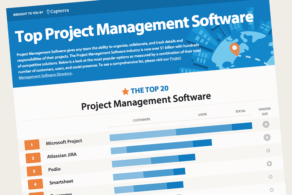 Project management for software