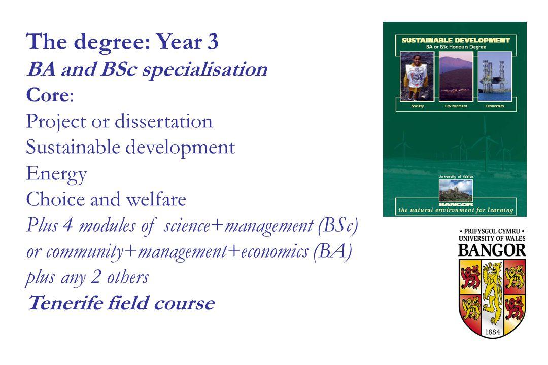 Development economics dissertation ideas