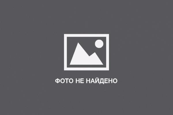 Бисквитный торт быстро рецепты