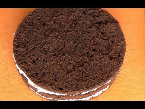 Шоколадный бисквит рецепт быстрый