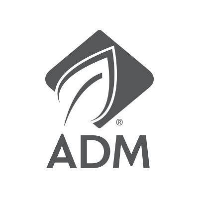 Download adm download manager Free Download for