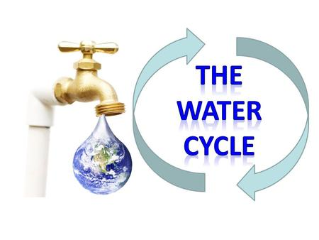 Water cycle essay question The Water Cycle