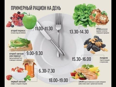 Белковые диеты варианты