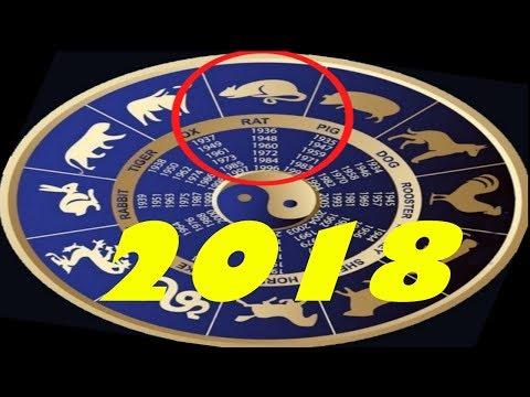 Гороскоп для крысы ов    2018 год женщи