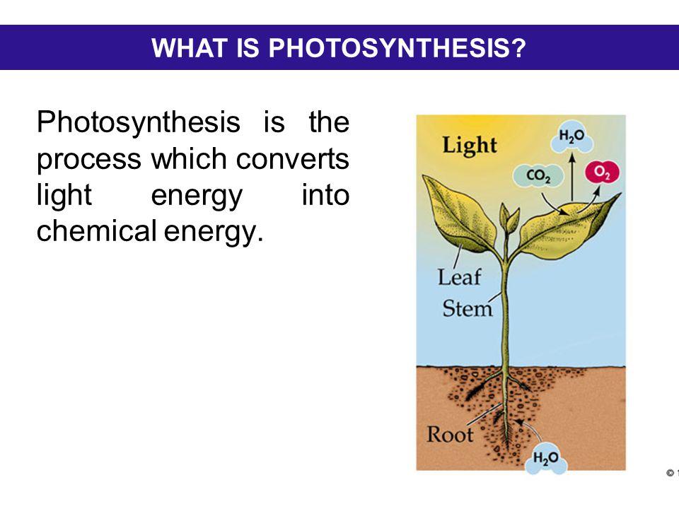 Photosynthesis - YouTube