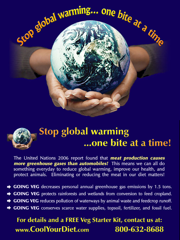 Free download essay on global warming