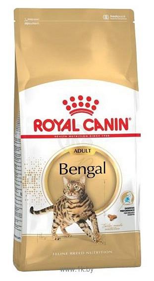 Какой корм лучше корм royal canin