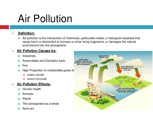 Write my essay on effect of pollution on environment