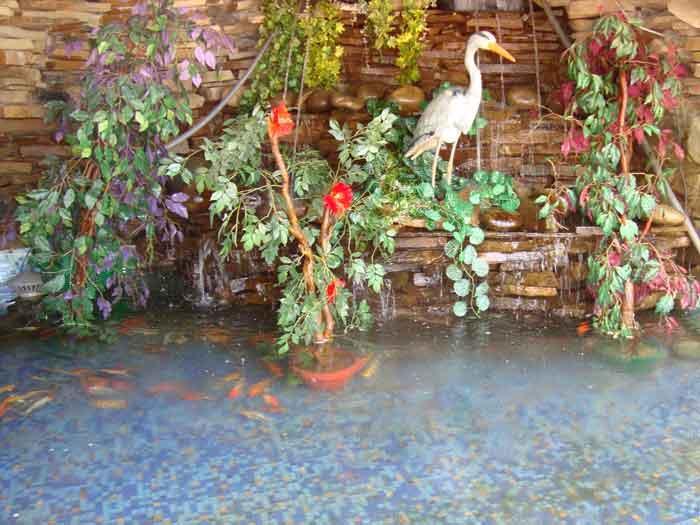 Ресторан Фруктовый сад - фотография 7