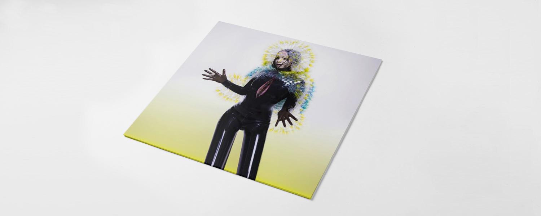 В плане музыки с Бьорк работали совсем новые люди, быстро ставшие ей буквально родными, но в визуальном плане, наоборот, люди проверенные: дизайнеры M/M и фотографы Инез и Винуд — стоит ждать клипа от Мишеля Гондри