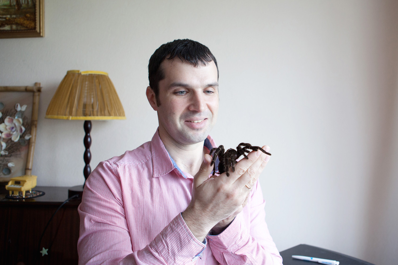 Александр Соколов и его паучиха Джульетта. Джульетта — южноамериканский птицеед Lasiodora parahybana