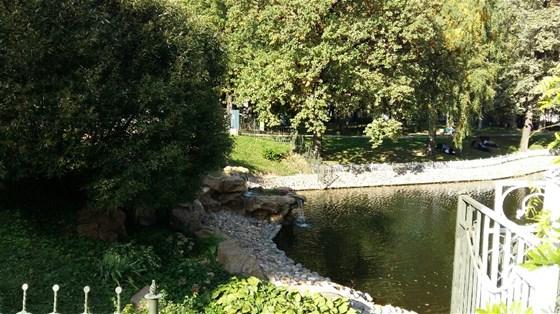 Фото лианозовский парк