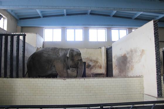 Фото парк Зоопарк