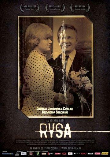 Постер Трещина