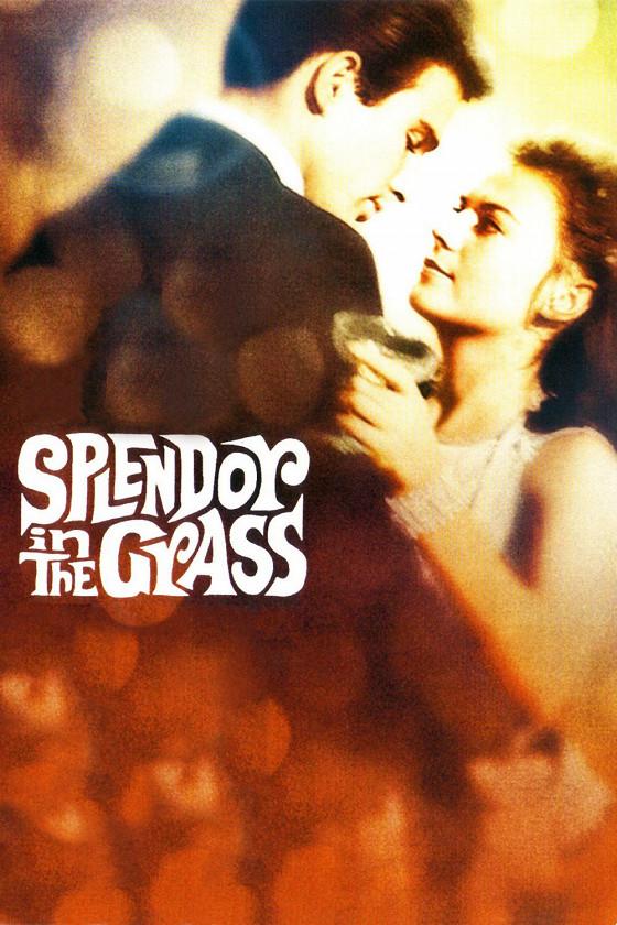 Великолепие в траве (Splendor in the Grass)