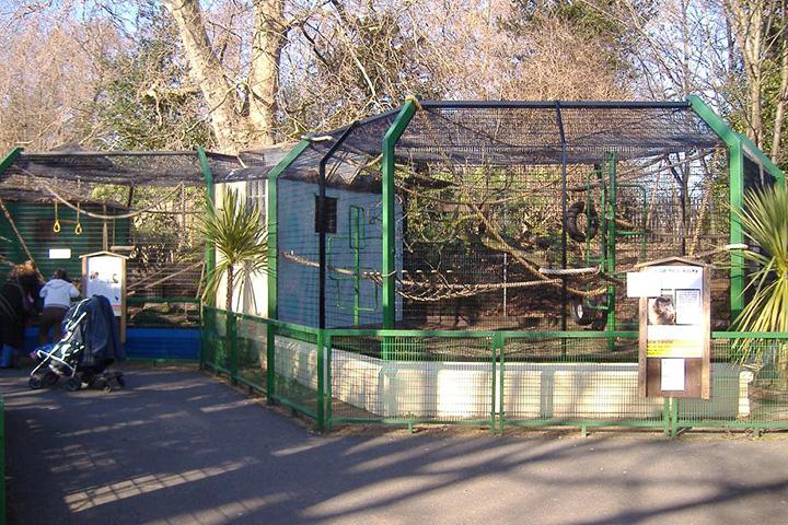 Детский зоопарк Баттерси-парка (Лондон, Англия)