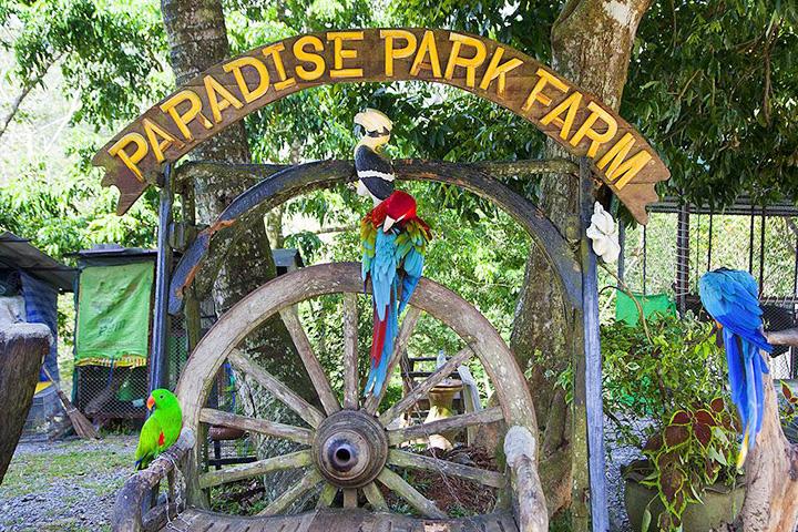 Парадайз парк (о. Самуи, Таиланд)