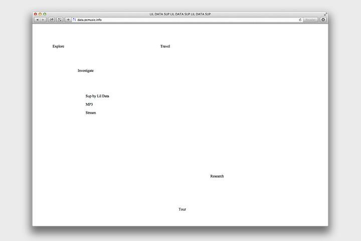 Data. Lil Data, Cabbibo, музыка, веб, 2014