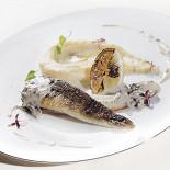 Ресторан Русские сезоны - фотография 4 - Филе ледяной рыбы с пюре из пастернака