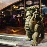 Ресторан Soluxe Club - фотография 2