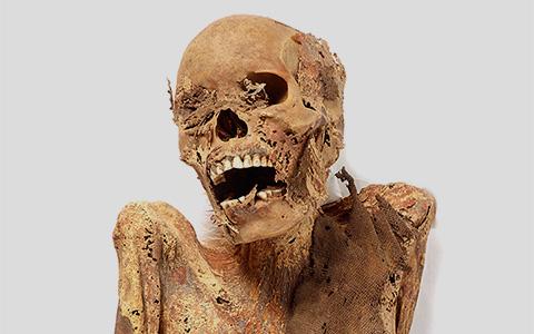 Мумии в Британском музее