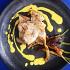 Ресторан Seafood Bar & Shop - фотография 9
