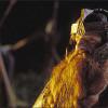 Властелин Колец: Возвращение короля (The Lord of the Rings: The Return of the King)