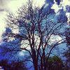 InstaArt. Искусство через фильтры Instagram