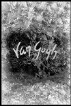 Ван Гог / Van Gogh