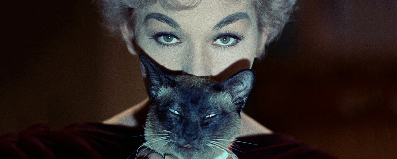 Улисс и другие важнейшие коты мирового кино