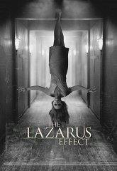 Постер Эффект Лазаря