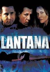 Постер Лантана