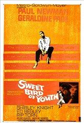 Постер Сладкоголосая птица юности