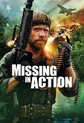 Постер Без вести пропавшие