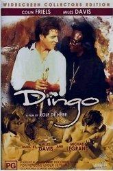 Постер Динго