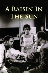 Постер Изюм на солнце