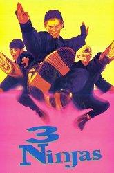 Постер Три ниндзя