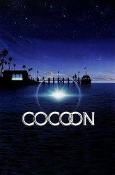 Постер Кокон