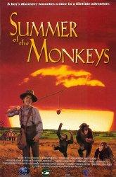 Постер Неприятности с обезьянками