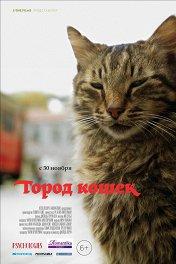 Город кошек / Kedi