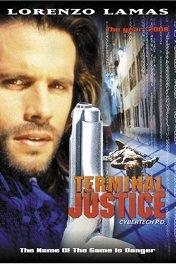 Виртуальный полицейский / Terminal Justice
