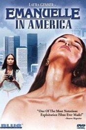 Проституция / Emanuelle in America