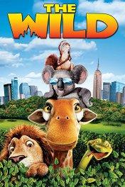 Большое путешествие / The Wild