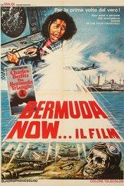Бермудский треугольник / The Bermuda Triangle