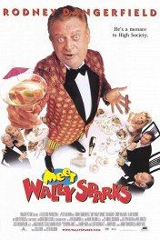 Познакомьтесь с Уолли Спарксом / Meet Wally Sparks