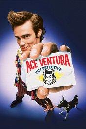 Эйс Вентура: Розыск домашних животных / Ace Ventura: Pet Detective